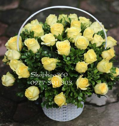 Giỏ hoa hồng vàng  thể hiện tình cảm tươi sáng