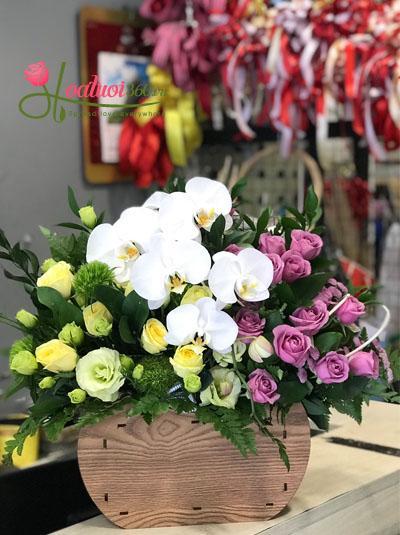 Hoa chúc mừng- Điều đặc biệt
