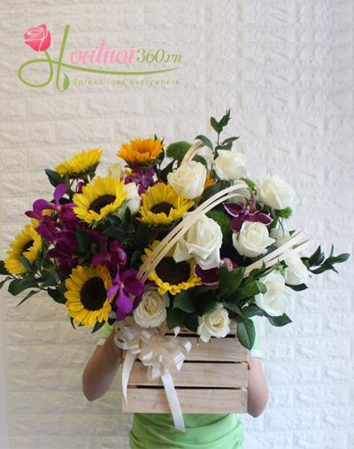Hoa chúc mừng được ưa chuộng nhất