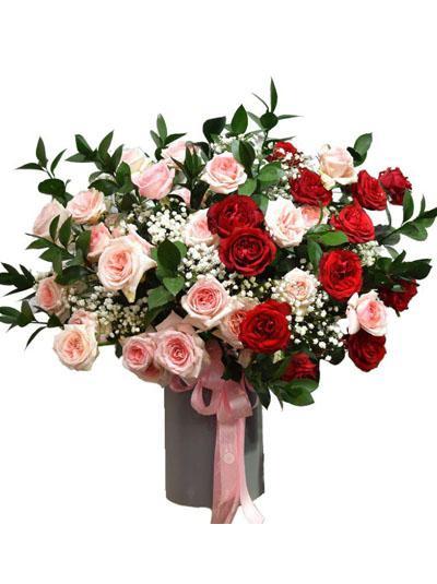 Hoa chúc mừng - Hộp hoa hồng Ohara tuyệt đẹp