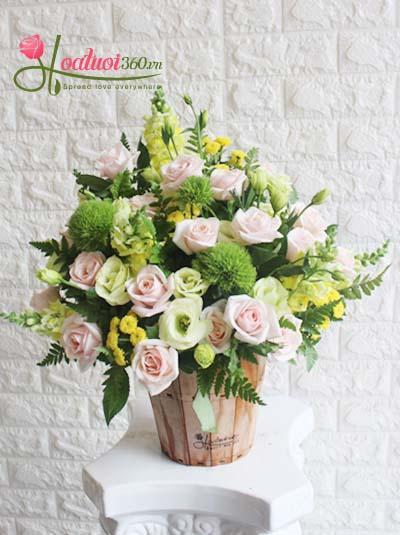 Hoa chúc mừng - Hương mùa hè