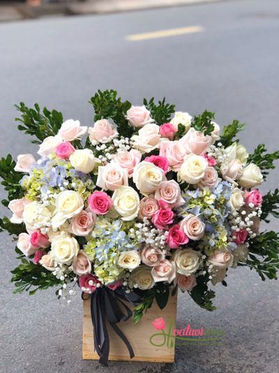 Hoa chúc mừng - Ngàn thương yêu