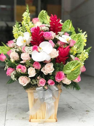 Hoa chúc mừng - Ngày đặc biệt