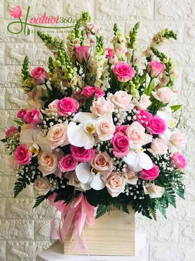 Hoa chúc mừng - Ngày hồng