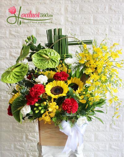 Hoa chúc mừng - Rạng ngời