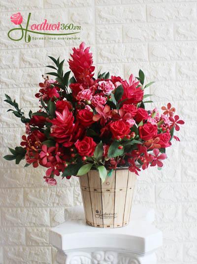 Hoa chúc mừng - Sắc đỏ