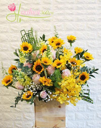 Hoa chúc mừng 20-11- Sunny day 2
