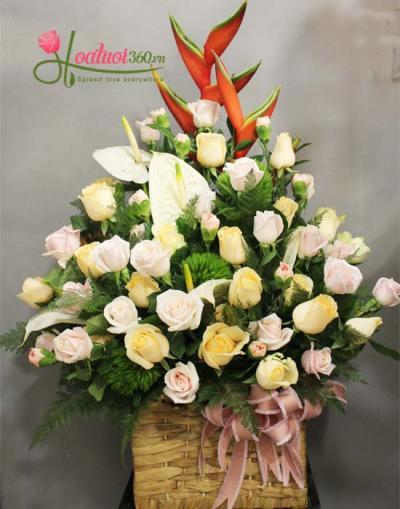 Hoa chúc mừng to và đẹp