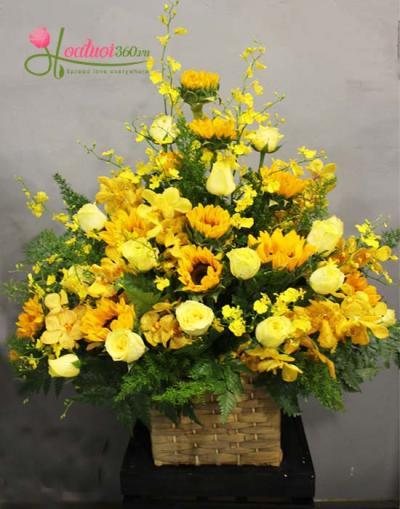 Hoa chúc mừng tone vàng rực rỡ