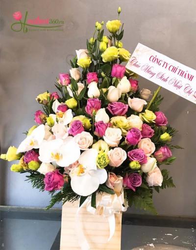Hoa chúc mừng- Vẻ đẹp sang trọng