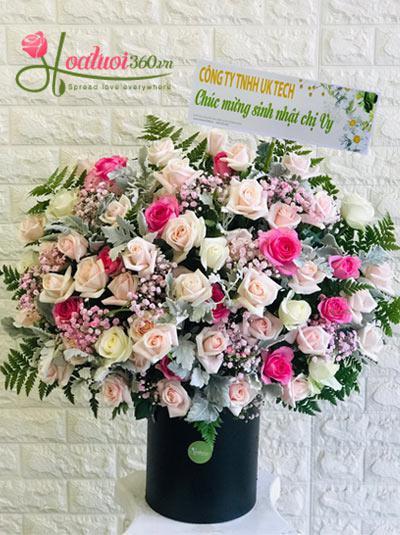 Hoa chúc mừng - Vườn hồng