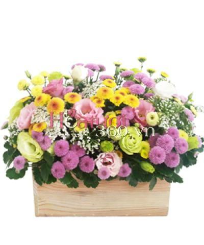 Hoa cỏ mùa xuân_Hoa Tươi 360
