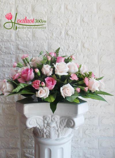 Hoa để bàn - Ngày mới tươi đẹp