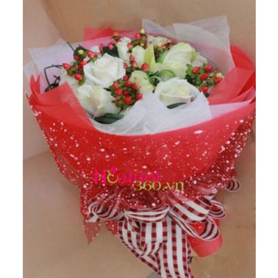 Hoa giáng sinh 01