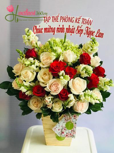 Hoa hồng chúc mừng sinh nhật - Tuổi thanh xuân