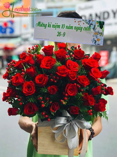 Hoa hồng đỏ - Rực rỡ chuỗi hồng ngọc