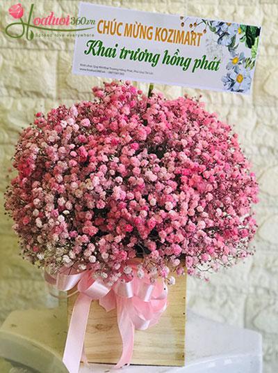 Hoa hộp baby hồng - Yêu nhau bềnh bồng