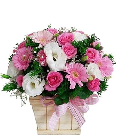 Hoa hộp gỗ- Hồng xinh