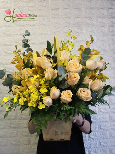 Hoa hộp gỗ - Lời chúc mừng