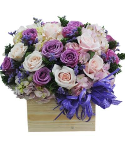 Hoa hộp gỗ-  Mộng mơ 2