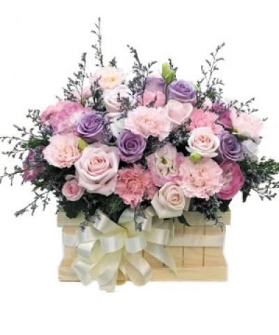 Hoa hộp gỗ- Mộng mơ