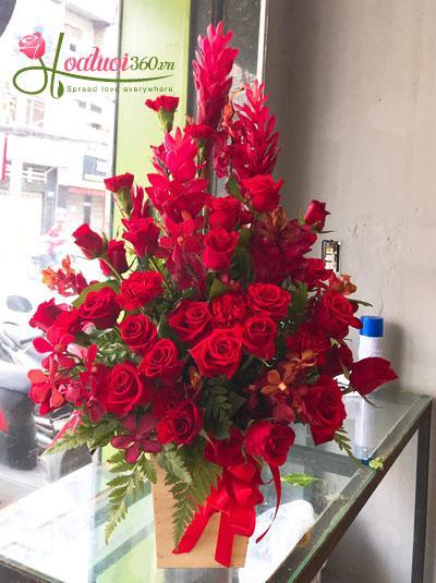 Hoa hộp gỗ- sắc đỏ thành công