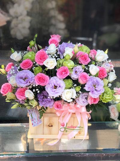 Hoa hộp gỗ - Sắc màu tình yêu