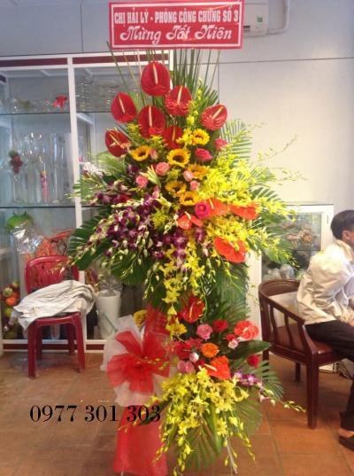 HOA KHAI TRƯƠNG 66_HOA TƯƠI 360