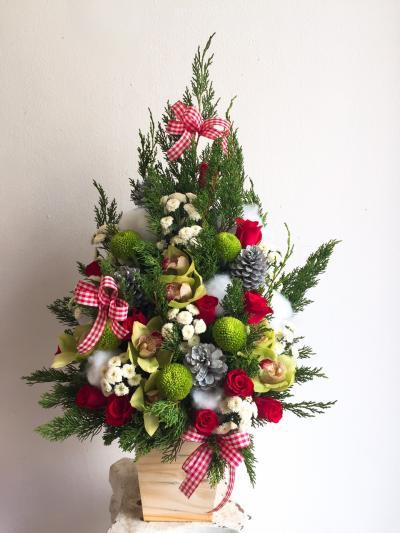 Hoa Mừng Giáng Sinh