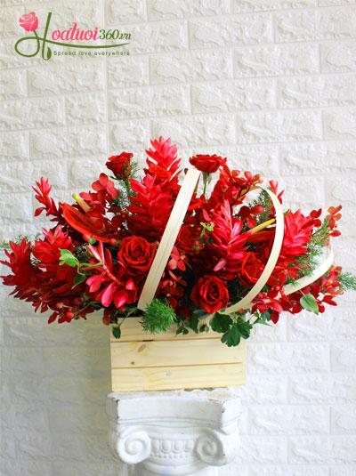 Hoa mừng sinh nhật - Mùa yêu