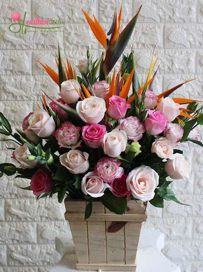 Hoa tặng người thân