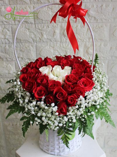 Hoa tình yêu 31