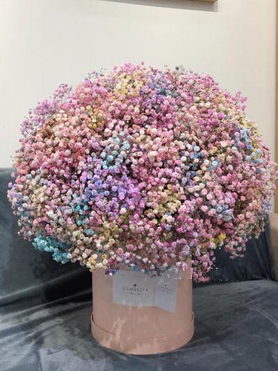 Hộp hoa baby cầu vồng