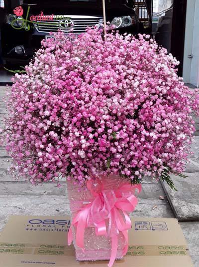 Hộp hoa baby hồng dễ thương 1