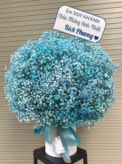 Hộp hoa baby xanh - Blue love