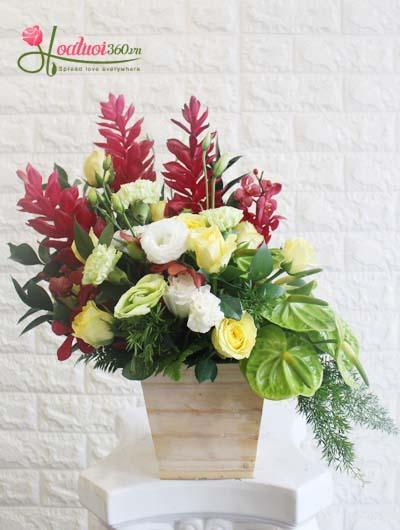 Hộp hoa chúc mừng - Bình yên