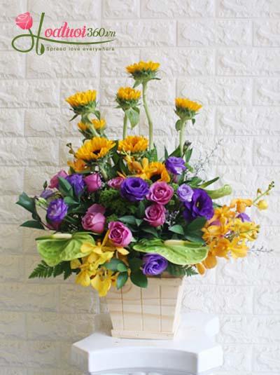 Hộp hoa chúc mừng - Sắc hạ