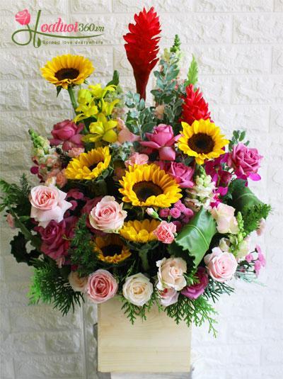 Hộp hoa chúc mừng - Vững niềm tin