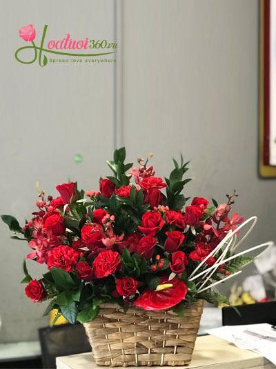 Hộp hoa- Đỏ thắm