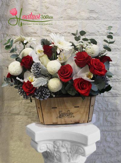 Hộp hoa giáng sinh - Hạnh phúc đong đầy