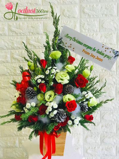 Hộp hoa giáng sinh - Sắc màu ngày đông
