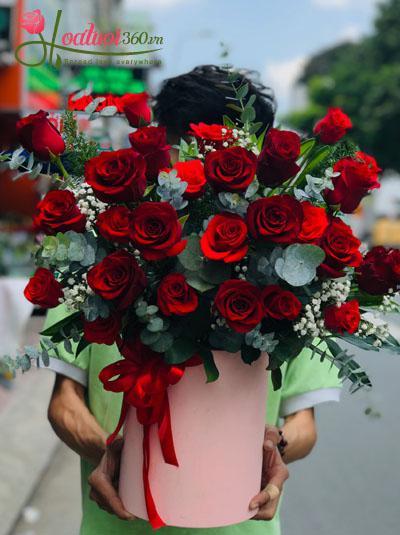 Hộp hoa hồng Ecuador - Bờ bến yêu thương