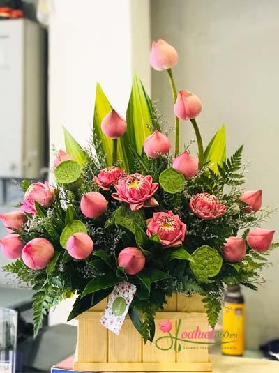 Hộp hoa sen hồng - Thanh tao