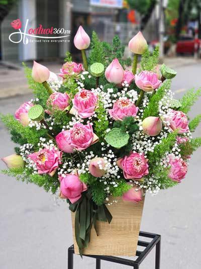 Hộp hoa sen hồng - Tình hồng