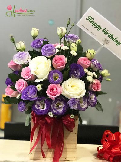 Hộp hoa xinh - tặng sinh nhật