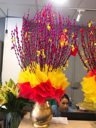Bình hoa tầm xuân - Khúc nhạc xuân