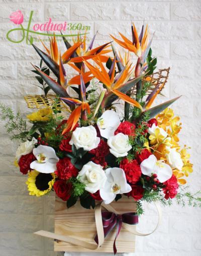 Lẵng hoa đẹp- Nhịp đập yêu thương