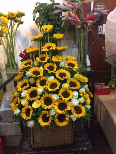 Lẵng hoa hướng dương chúc mừng