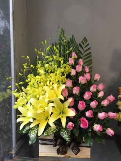 Hộp hoa Lời chúc thành công