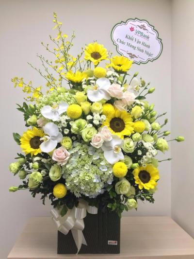 Hoa chúc mừng ngày 8-3: Nắng Sớm Mai